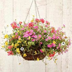 New Home Interior Design: Create Stunning Hanging Baskets