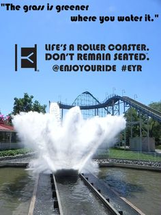 """""""The grass is greener where you water it.""""  Life's a roller coaster. Don't remain seated. @ENJOYOURIDE #EYR www.looseleafbrands.com"""