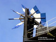 Windmühle Törpin als Poster oder Leinwandbild