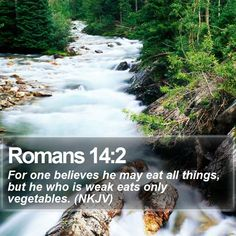 Romans 14:2 For one believes he may eat all things, but he who is weak eats only vegetables. (NKJV)  #Rock #Meditation #Mercy #BibleStudy #OurDailyBread http://www.bible-sms.com/