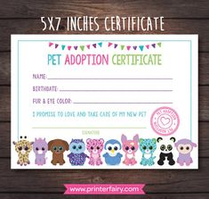 Beanie Boo Adoption Certificate Pet adoption party by PrinterFairy