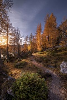AUTUMN at beautiful Dolomites - Autumn colors at Lago Federa, Dolomites Around The Worlds, Country Roads, Autumn, Landscape, Nature, Pictures, Photography, Beautiful, Colors