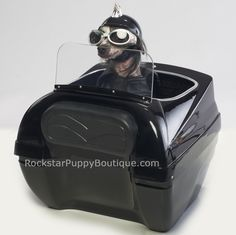 Rear Mounted Motorcycle Dog Carrier -- I so need this for my little Zoey beast!