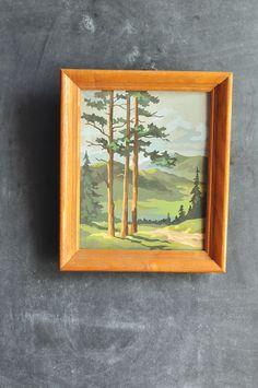 Vintage 70s Landscape Nature Scene Paint by Number Framed Art