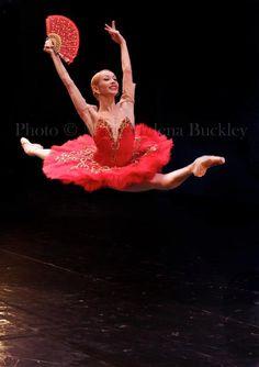 Iana Salenko in Don Quixote by Maria-Helena Buckley.    (via thedailyballet)