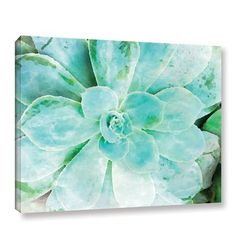 "Bungalow Rose 'Teal Succulent 1' Painting Print on Canvas Size: 18"" H x 24"" W x 2"" D"