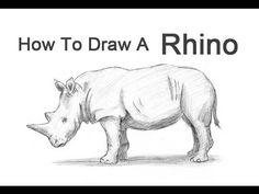 How to Draw a Rhinoceros - YouTube