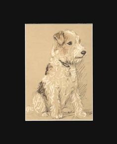 Wire Fox Terrier Dog Print by Lucy Dawson 8X10 Matted 1940 | eBay