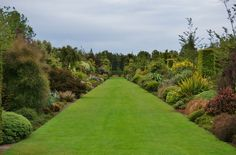 Double border of New Zealand native plants | Flickr - Photo Sharing!