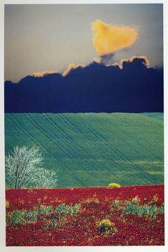 Franco Fontana Urban Landscape, Landscape Photos, Abstract Landscape, Franco Fontana, Polaroid, Color Photography, Les Oeuvres, Photo Art, Scenery