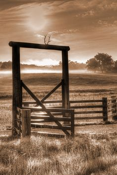 Photography Morning light fog fence Sepia landscape