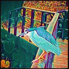 # ServersCom 42/44 @Prisma ~ 44*effects+% Square size. 🎬🎨 Painterly photo Editing app * #PrismaApp #getPrisma #Prisma #prisma🔼 #prisma🔺 #prismaLook #prismaVibe #prismaNsk _All Is #AfterEffects #FilterEffects #PrismaEffects #EditorEffects by #ArtFilters #PhotoEditing *#Edited_iam to #ARTificialEffects #DigitalArt #NeuralEffects #NeuralArt with #Joyance #JoyRide 🎠.