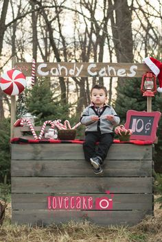 Christmas mini sessions at indian orchards christmas tree farm