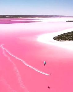 Pink lake in Western Australia Source by travel beautiful places Pink Lake Australia, Australia Travel, South Australia, Lake Hillier Australia, Beautiful Places To Travel, Beautiful Beaches, Lac Retba, Lac Rose, Vacation Places