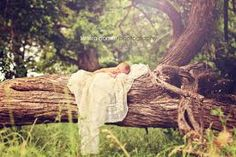 outdoor newborn photography - Google Search