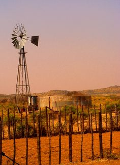 The Karoo is synonymous with Windmills - you see them scattered over the landscape     Karoo - meaning dry & arid region - is dependent on water (Windmills are the source of life)