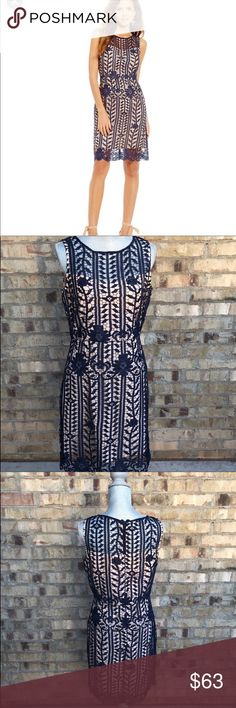 Gianni Bini (Dillard's) Lace Overlay Dress Navy Gianni Bini (Dillard's) Navy lace overlay sleeveless Kayla dress, size 8, hits right above the knee, only worn once to a wedding, Excellent Condition, has been dry cleaned. Gianni Bini Dresses