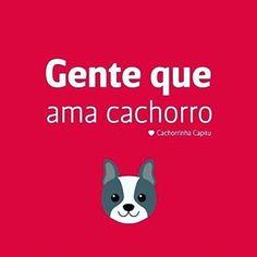 EU AMO CACHORRO E TODOS OS ANIMAIS DESSE MUNDO!!❤️❤️❤️ #amoanimais  #amocachorro  #cachorro  #petmeupet  #gato  #amogato