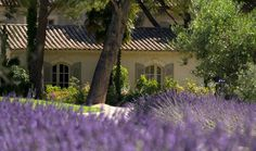 Hotel Benvengudo, Provence - Boutique hotel