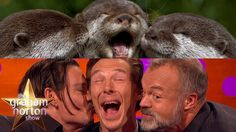 Benedict Cumberbatch, Johnny Depp and Graham Take Otter Photos - The Gra...