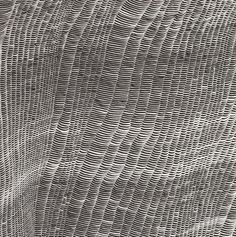 Sophie Tottie - Written Language (2009) - Ink on paper