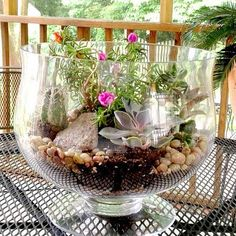 <p>Terrariums are the perfect way to enjoy a little bit of nature inside. I love to design sweet miniature gardens, especially during the winter months when everything is dead outside. They are easy to make and even easier to maintain. See below for what you need and how to make trendy succulent gardens as well as romantic moss terrariums.</p>