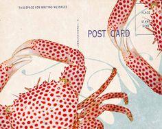 yumikrum, crab photo Flickr