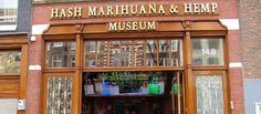 To visit a cannabis cafe or not? When in Rome! Er... Amsterdam! ;)  Hash Marihuana & Hemp Museum |