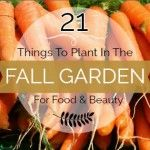 21 Things to Plant in the Fall Garden for Food and Beauty 1