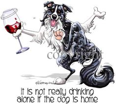 Border Collie It's not drinking alone 2