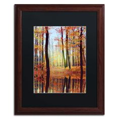 'Fall Mirror' by Philippe Sainte-Laudy Framed Photographic Print