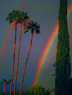 Beautiful Monsoon Rainbow - Arizona