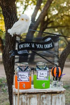 Drink if you Dare at this fun Halloween Party! See more party ideas and share y… Drink if you Dare Halloween Party Drinks, Halloween Bingo, Halloween Celebration, Halloween Photos, Halloween Birthday, Halloween Activities, Family Halloween, Cute Halloween, 2nd Birthday