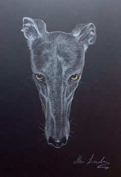 Steve Sanderson Artist 11952011_732961660143400_8157487871505554049_n.jpg 653×960 pixels