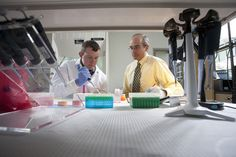 Ronald Torry and Nick Lund prepare samples in the Ellis Pharmacogenomics Laboratory to determine changes in gene expression using polymerase chain reaction. Drake University, University College, Pharmacy Student, Personalized Medicine, Gene Expression, Leadership Roles, Drugs, Lab, Health Care