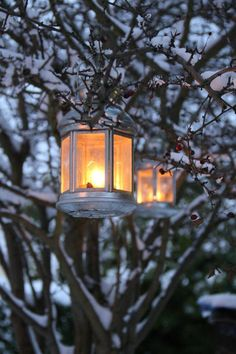 winter, holiday, lamps