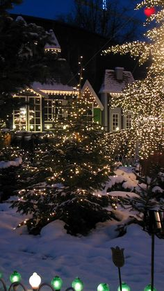 A Home Decorated In Outdoor Christmas Lights. Gonna fall in love with a christmas tree Christmas Scenes, Noel Christmas, Outdoor Christmas, Winter Christmas, Cottage Christmas, Christmas Photos, Christmas Villages, Victorian Christmas, Christmas 2017