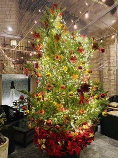 """""""代官山ブラッスリータブローズでは、女性限定のファーストドリンク1杯無料サービスを、12月4日(金)より開始いたします! パティオバーの幻想的なライトの下で、クリスマスツリーを眺めながら、おしゃべりに花を咲かせてみては。"""" Xmas, Christmas Tree, Holiday Decor, Plants, Home Decor, Brewery, Teal Christmas Tree, Decoration Home, Room Decor"""