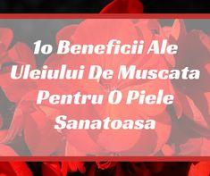 1o Beneficii Ale Uleiului De Muscata Pentru O Piele Sanatoasa | VIVASANSHOP