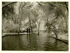 Liberty Park Salt And Honey, Slc, Salt Lake City, Utah, Liberty, Park, History, Photography, Political Freedom