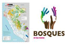 2010- Programa Nacional  de Conservación de Bosques