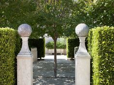 COTE DE TEXAS covers John Saladino's career and estates - gate entry plinth globes hedge privet Love Garden, Dream Garden, Garden Urns, Garden Path, Landscape Design, Garden Design, Big Leaves, Garden Features, Garden Accessories