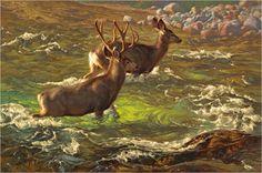 mule deer painting by Greg Beecham