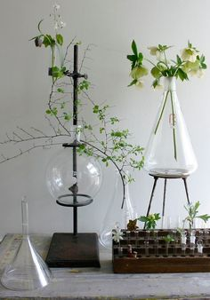 Better living through chemistry? We like to repurpose vintage laboratory equipment to make vases...