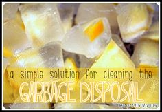 8 simple solutions for cleaning the garbage disposal. Cleaning Recipes, House Cleaning Tips, Cleaning Hacks, Cleaning Vinegar, Diy Cleaners, Cleaners Homemade, Green Cleaning, Spring Cleaning, All You Need Is