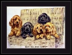 English-Print-Cocker-Spaniel-Dog-Puppy-Dogs-Puppies-Vintage-Art-Picture-Poster