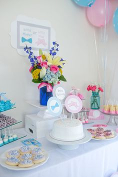 Early Gender Reveal from Panorama Testing + Party Inspiration