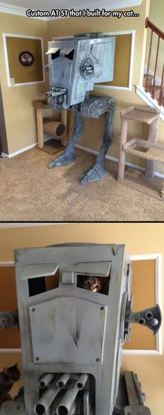 #Funny #cat play house Star Wars