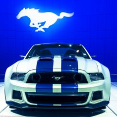 New Mustang, Ford Mustang Shelby Gt500, Mustang Cars, 1979 Ford Truck, Car Ford, New Sports Cars, Sport Cars, Mustang Wallpaper, Custom Muscle Cars