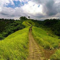 Our new life is starting. From Paris to Ubud-Bali, we discover gorgeous landscapes and a new life style. This pics was taken during a morning trekking close to Ubud. #mystopover #summer #passportready #wanderlust #travelphotography #smile #trekking #green #ricefields #indonesia #weloveit
